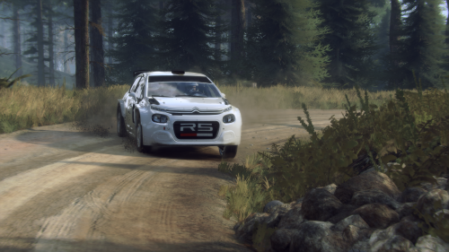 PCSpecialist and AMD collaborate with British Rally Championship Photo